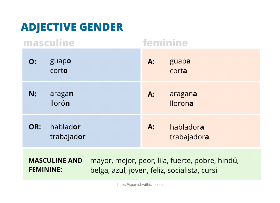 spanish adjective gender